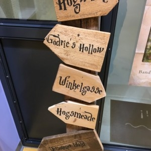 18 11 16 Harry Potter Bibliothek  8